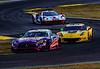 2019 Petit Le Mans ©CoburnPix-107