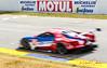 2019 Petit Le Mans ©CoburnPix-8