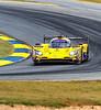 2019 Petit Le Mans ©CoburnPix-3-4