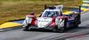 2019 Petit Le Mans ©CoburnPix-18-2