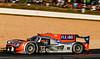 2019 Petit Le Mans ©CoburnPix-97