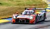 2019 Petit Le Mans ©CoburnPix-21