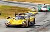 2019 Petit Le Mans ©CoburnPix-57