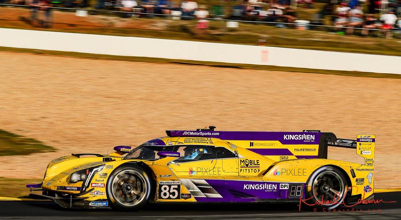 2019 Petit Le Mans ©CoburnPix-94