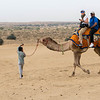 Uber camel driver turns to GPS on the trail