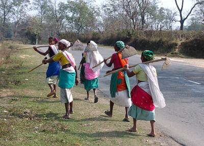 TEA PLANTATION WORKERS - JORHAT