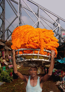 COOLIE - CALCUTTA FLOWER MARKET