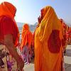 Saris at dawn