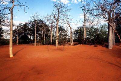 SOUTHERN MADAGASCAR