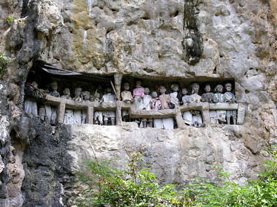 CLIFFSIDE GRAVES - TANA TORAJA