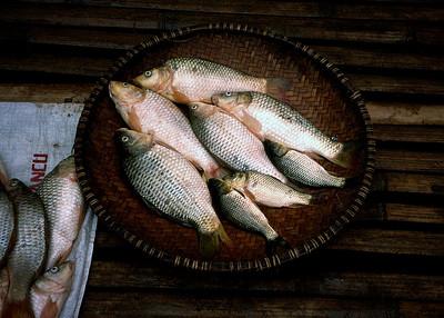 BRESTAGI FISH MARKET - NORTH SUMATRA