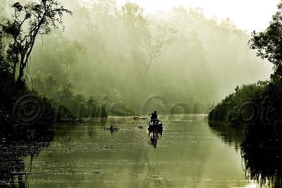 Borneo,  © Luis Courtot