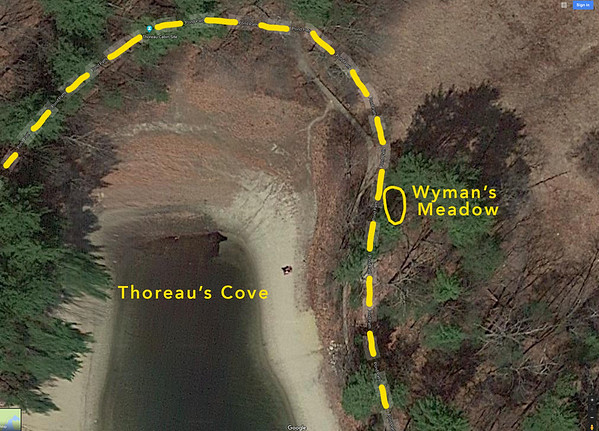 Wymans_Meadow_Satellite_Closeup_Yellow_Path