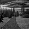 Obelisks & Path, Magnuson Park, Seattle (February, 2014)