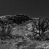 Pecos National Park, New Mexico (1) - March, 2014