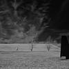 Obelisks & Walker, Magnuson Park, Seattle (February, 2014)