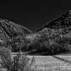Pecos National Park, New Mexico (5) - March, 2014