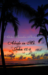 JOHN 15:4 SALT POND BEACH PARK