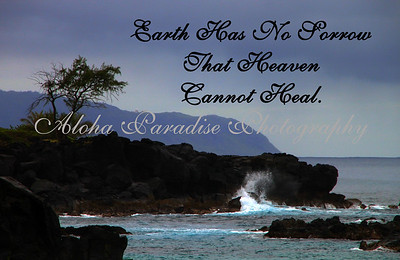 EARTH  SORROW, WAIMEA BAY, OAHU