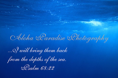 PSALM 68:22 UNDER THE SEA AT MAUI