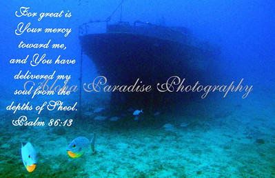 PSALM 86:13 UNDER THE SEA MAUI
