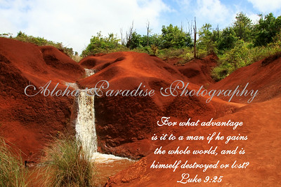 LUKE 9:25, RED DIRT WATERFALL WAIMEA CANYON DRIVE, KAUAI