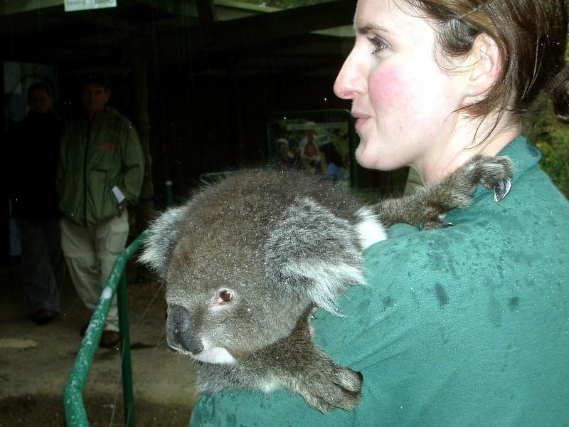 melbourne and adelaide australia