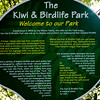 Kiwi information
