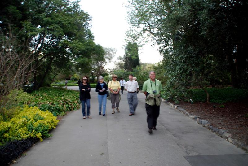 Christchurch to Queenstown, New Zealand flowers christchurch botonical gardens chc Christ Church, New Zealand