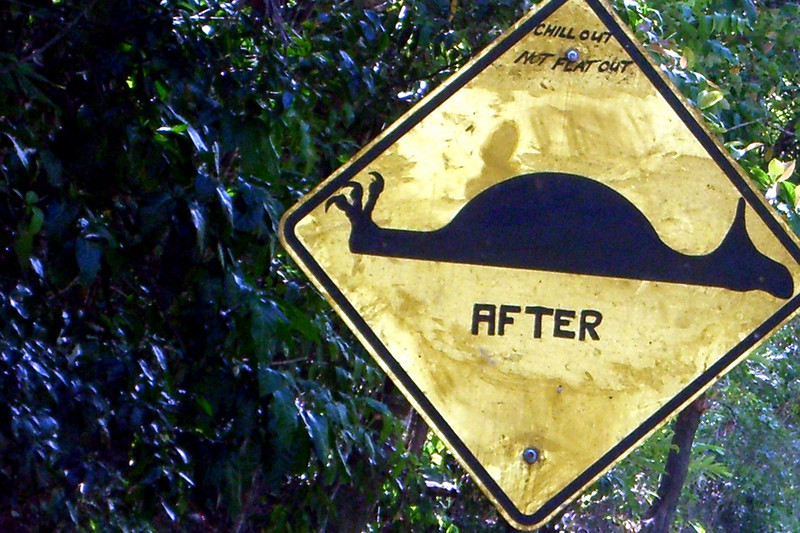 After - Road sign New Zealand