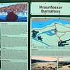 Hraunfossar Barnafoss springs 2011