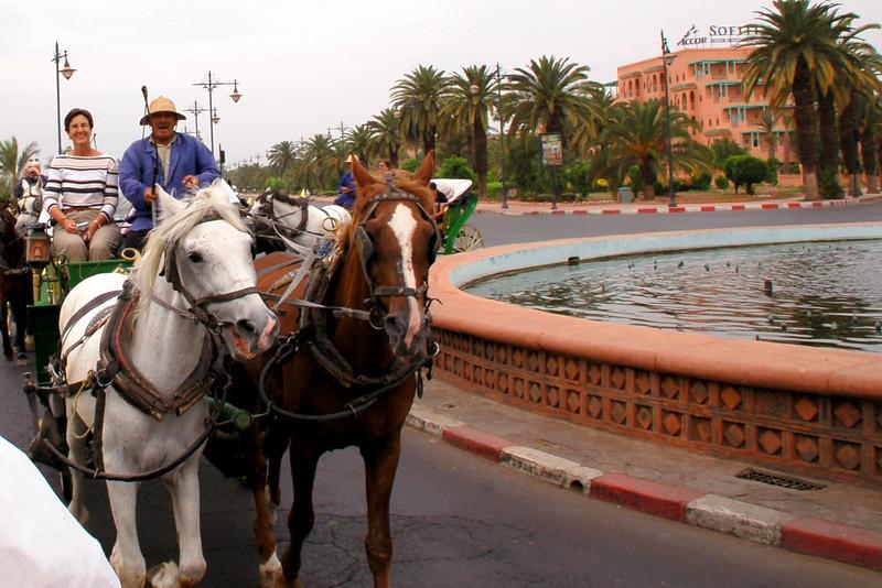 Marrakesh buggy ride berber