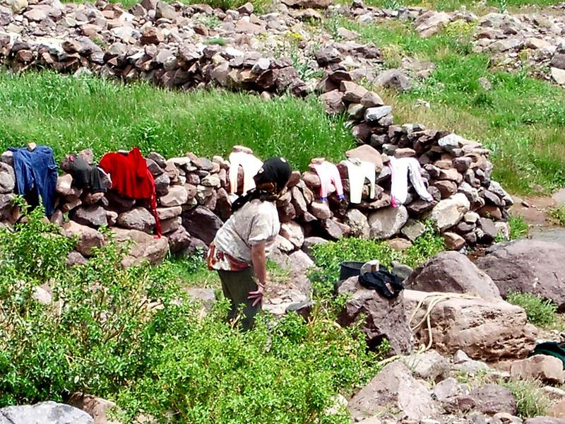laundry day berber