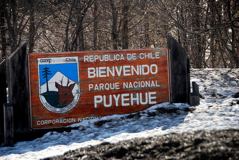 Chile  Puyehue park
