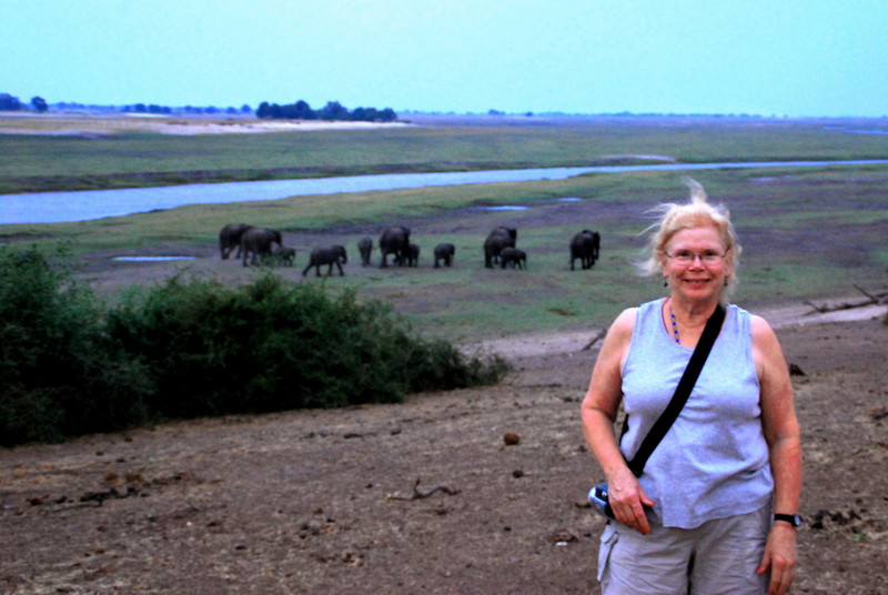 betty with a herd of elephants in the distance.