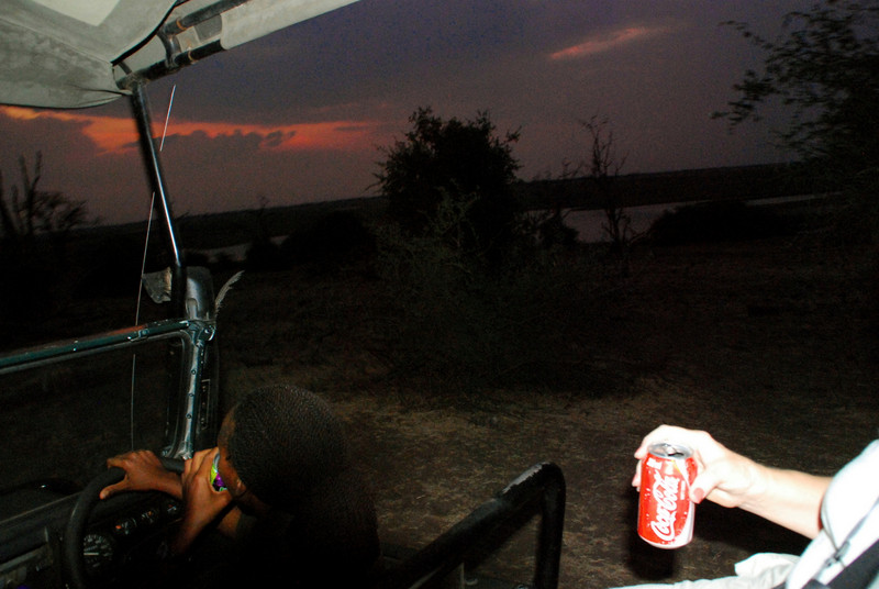 sun down and the night game drive begins