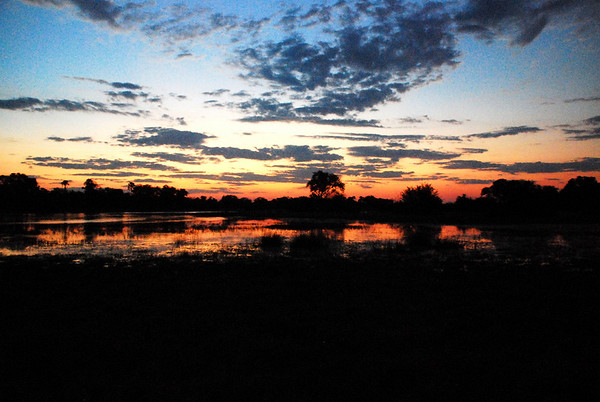 African Sunset Moremi Game Reserve, Botswana in the Okavango Delta