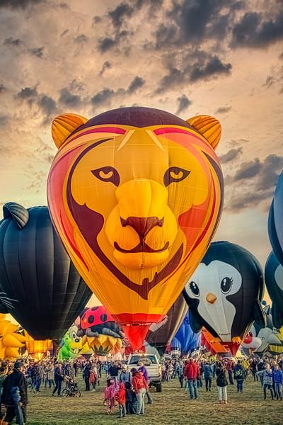 G-Leat Lion Balloon Head-On - John O'Neill Photography