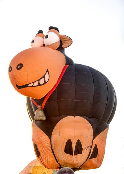 Happy Cow Balloon - John O'Neill Photography