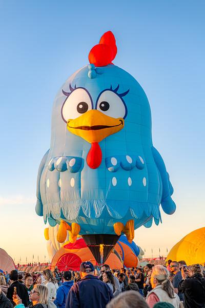 Fired-Up Blue Bird - John O'Neill Photography