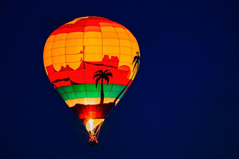 Palm Tree Balloon - John O'Neill Photography