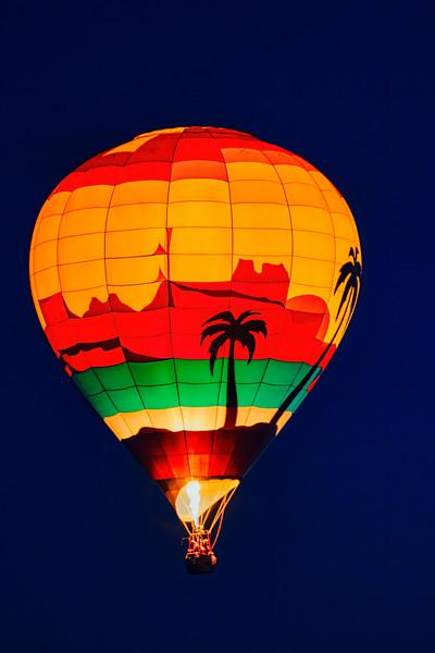 Palm Tree Balloon Vertical - John O'Neill Photography