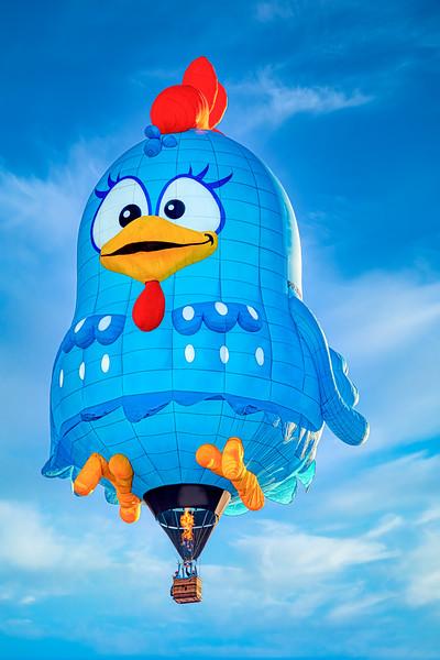 Crazy Blue Bird Balloon - John O'Neill Photography