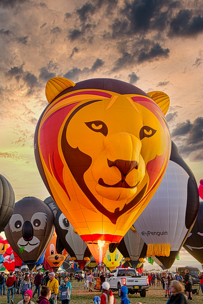 Lion Balloon at Sunset - John O'Neill Photography