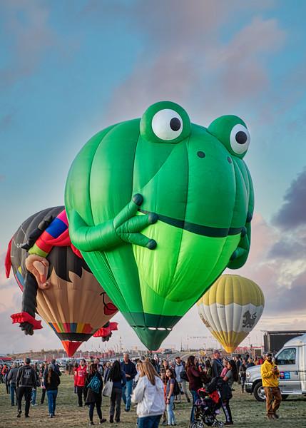 Frog Balloon - John O'Neill Photography