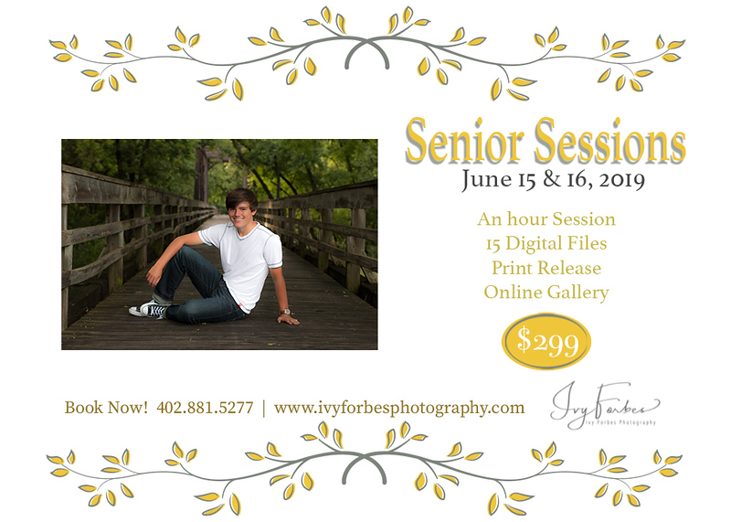 Mini Senior Sessions