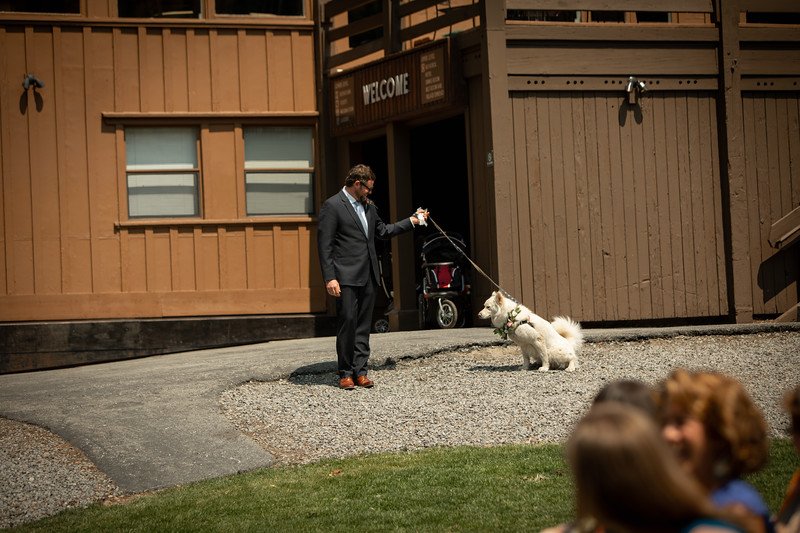 Candid and beautiful wedding photography by Katie Figura