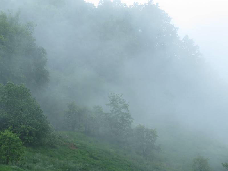 June 2 2013   Mountain Fog