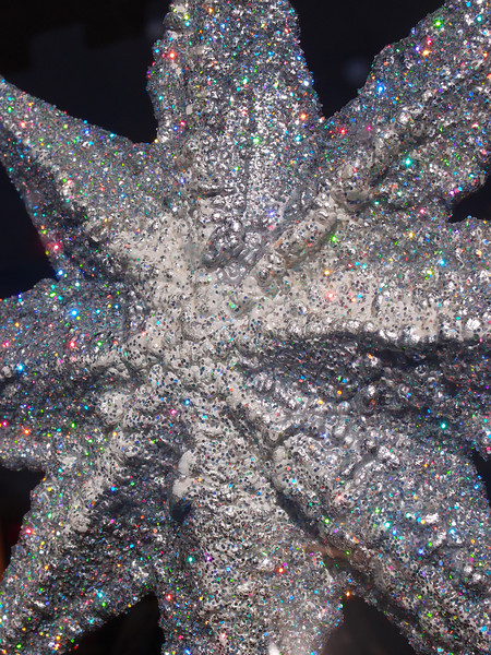 December 14 2012   Rainbow Star