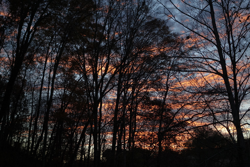 November 5 2013   Sunset silhouettes